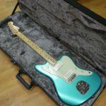 Fender American Standard Vs American Professional